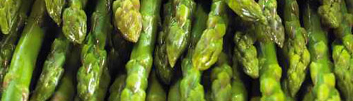Early asparagus
