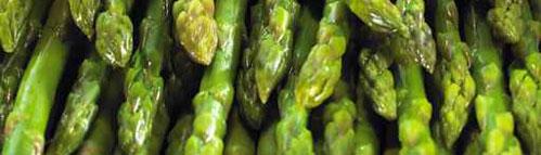 Early asparagus
