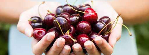 National Cherry Day