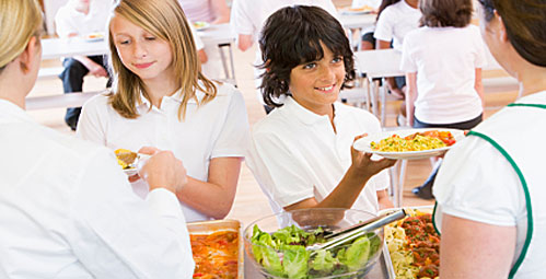 Have school dinners improved?