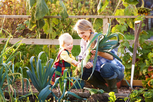 National Allotments Week