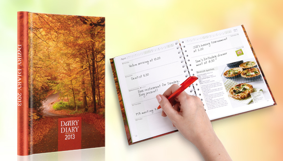 The Sairy Diary 2013 is now available
