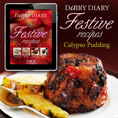 Free Festive Recipes Dairy Diary 2013