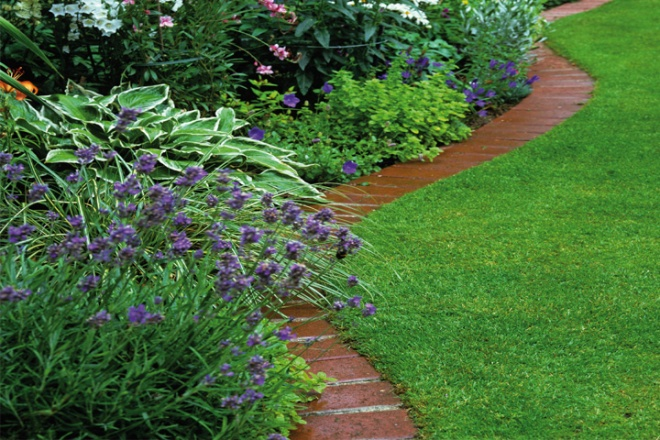 Step by step guide to brick border edging dairy diary chat for Brick border garden edging ideas