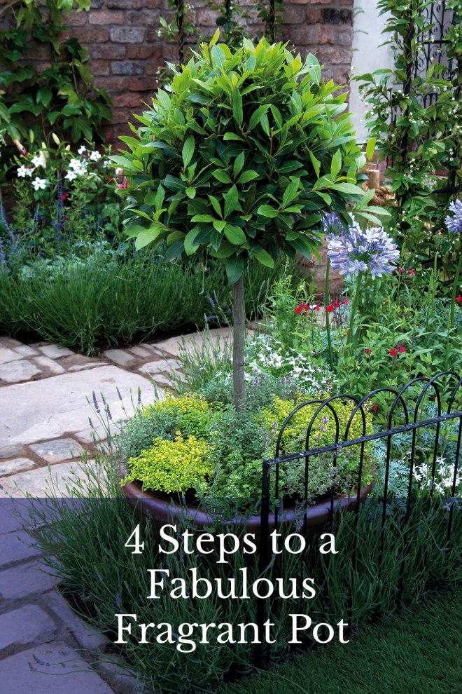 4-Steps-to-a-Fabulous-Fragrant-Pot