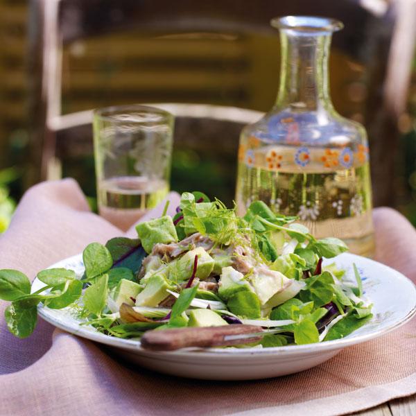 Tuna and Avocado Salad