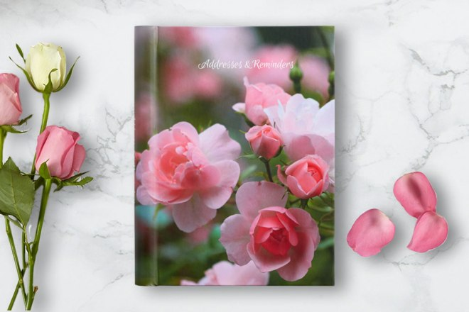 Addresses & Reminders Book